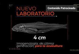 Nuevo laboratorio de imagenología de última generación para la acuicultura