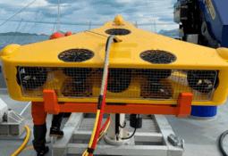 Los planes de expansión del proveedor acuícola Ocein Chile