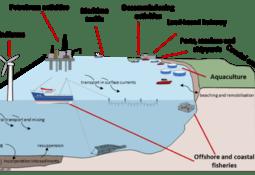 Acuicultura y transporte naviero entre fuentes marinas de microplásticos