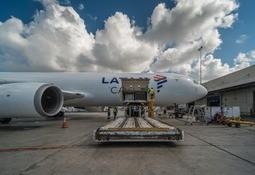 Latam expandirá su flota de carga aérea para apoyar envíos de salmón