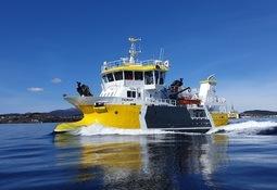 Hofseth utfordrer «Norwegian Gannet»