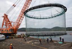 EcoSea logra reciclar el 100% de sus sistemas acuícolas