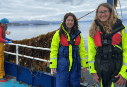 First 'salmon farm seaweed' harvested at Scalpay