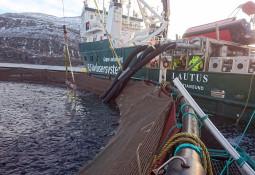 Kvarøy Fiskeoppdrett inngår avlusingsavtale med Rent Havbruk
