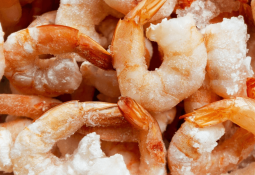 Shrimp giant forges new link in the blockchain