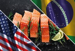Destacan buen desempeño del salmón chileno en sus principales mercados