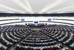 EU setback for novel lice treatment