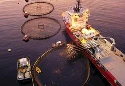 Solid vekst for Flatsetsund Engineering