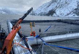 Grupo noruego vende participación en empresa chilena de servicios acuícolas