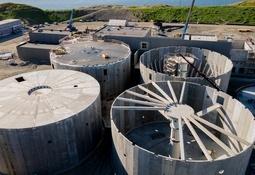 Cargill registra hito: invierte en productor de salmón en tierra