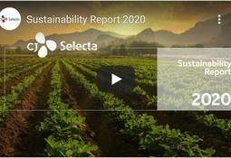 Soyaselskapet CJ Selecta med bærekraftsrapport