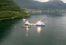 Venter spent på svar om ny torsketillatelse