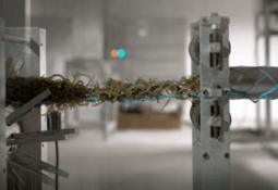 Aqua-Spark takes a stake in rope-to-retail seaweed company