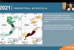 El incipiente mercado acuícola chino que se abre para proveedores chilenos