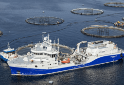 Wellboat operator Intership doubled profit in 2020