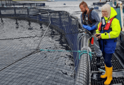 Shetland MSP gets up to speed with salmon farming