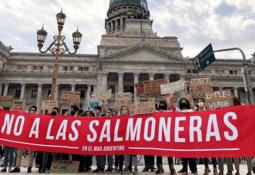 Tierra del Fuego's ban on 'big salmon' moves a step closer