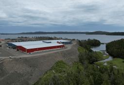 Grieg postpones first stocking in Newfoundland as precaution against ISA