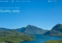 Productor de salmón chileno inicia ventas online en Estados Unidos