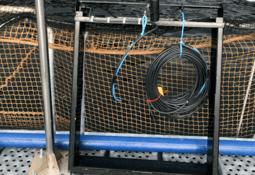 Logran validar en Chile estimador de biomasa no invasivo para salmones