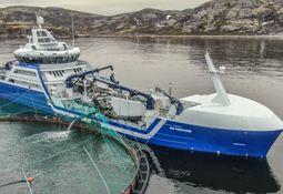 Russian Aquaculture turns loss into £19.5m profit