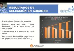 Resistencia genética a Caligus: salmón Atlántico vs coho