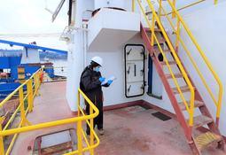 Chilenos crean plataforma que ayuda a evitar errores en wellboats