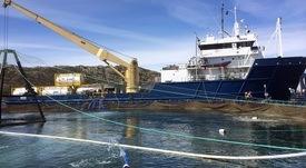 Høringssvar: Fiskevelferd må gå foran miljøhensyn