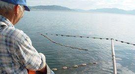 Norske Lakseelever kritiserer sjølaksefiskerne