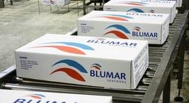 Salmones Blumar es la mejor pagadora a pymes
