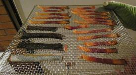 Un nuevo uso para la piel del salmón