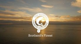 Fish deaths cause Q3 loss for Scottish Salmon Company