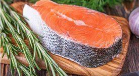 Restaurantes serían los primeros en ofrecer salmón genéticamente modificado