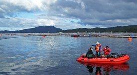 ASC: Estudio de WWF Chile entrega recomendaciones para monitoreo ambiental y social