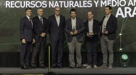 Empresa chilena elaboradora de harina de insectos gana premio Avonni