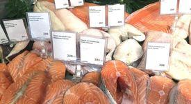 Febrero: Exportaciones de salmón chileno crecieron 3,4%