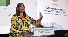 Sernapesca estudia cambios del virus ISA en salmón chileno