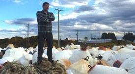 Recollect: Generando sinergías para la revalorización de desechos acuícolas