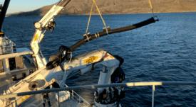 Barco retira mil toneladas de salmón por bloom de algas noruego