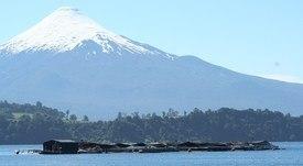 Talleres de redes critican propuesta para seguir cultivando peces en ríos y lagos