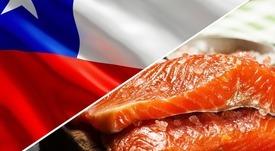 Los mercados que más están creciendo para el salmón chileno