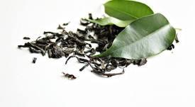 Película biodegradable en base a té verde alargaría vida útil del salmón