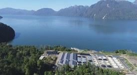 Aysén: Crearán plataforma de licitaciones para proveedores del salmón