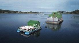Gasco desarrolla sistema energético a gas licuado para centros de salmón
