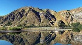 Skretting Chile crea el primer bosque de la acuicultura nacional
