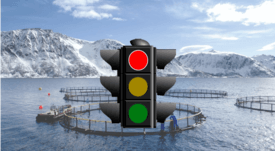 Traffic lights signal production rise in Norway