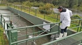 Aprueban reglamento de lodos de pisciculturas que permitirá su reutilización