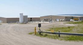 Mowi cosecha 450 mil salmones por brote de virus ISA en Canadá