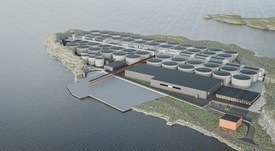 Korean seafood giant invests £4.3m in Norwegian on-land salmon farm