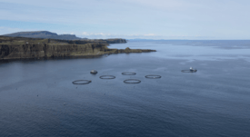 First feed barge delivered to Skye organic salmon farmer